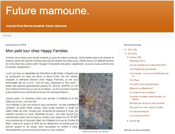 Happy Families - Article de Future Mamoune